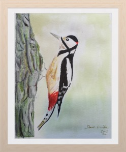 My woodpecker sketch :-)